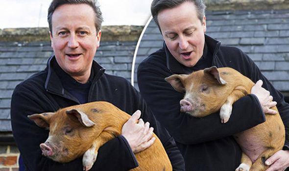David Cameron nei Guai per Biografia non Autorizzata