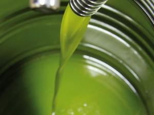 Spacciavano Olio d'Oliva per olio Extravergine: Bertolli nei Guai