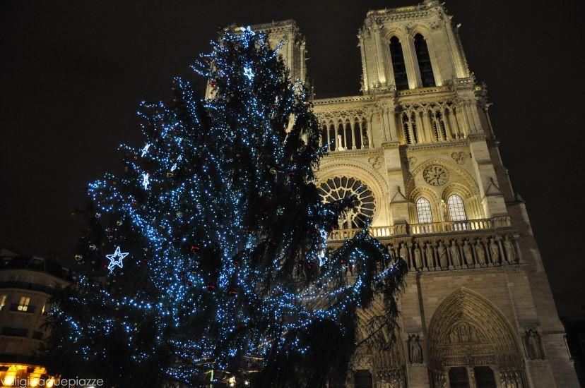 Parigi, niente albero di Natale a Notre Dame