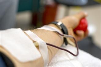 Usa: gay possono donare sangue