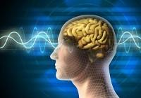 Scosse Elettriche al Cervello Rafforzano Memoria