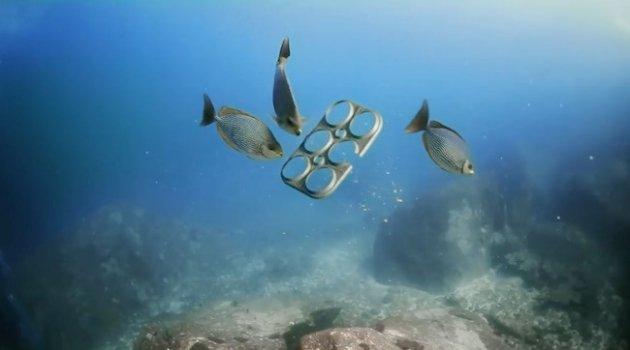 Imballaggio birra diventa alimento per pesci