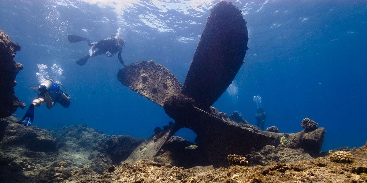Usa, Obama inaugura parco marino più grande al mondo