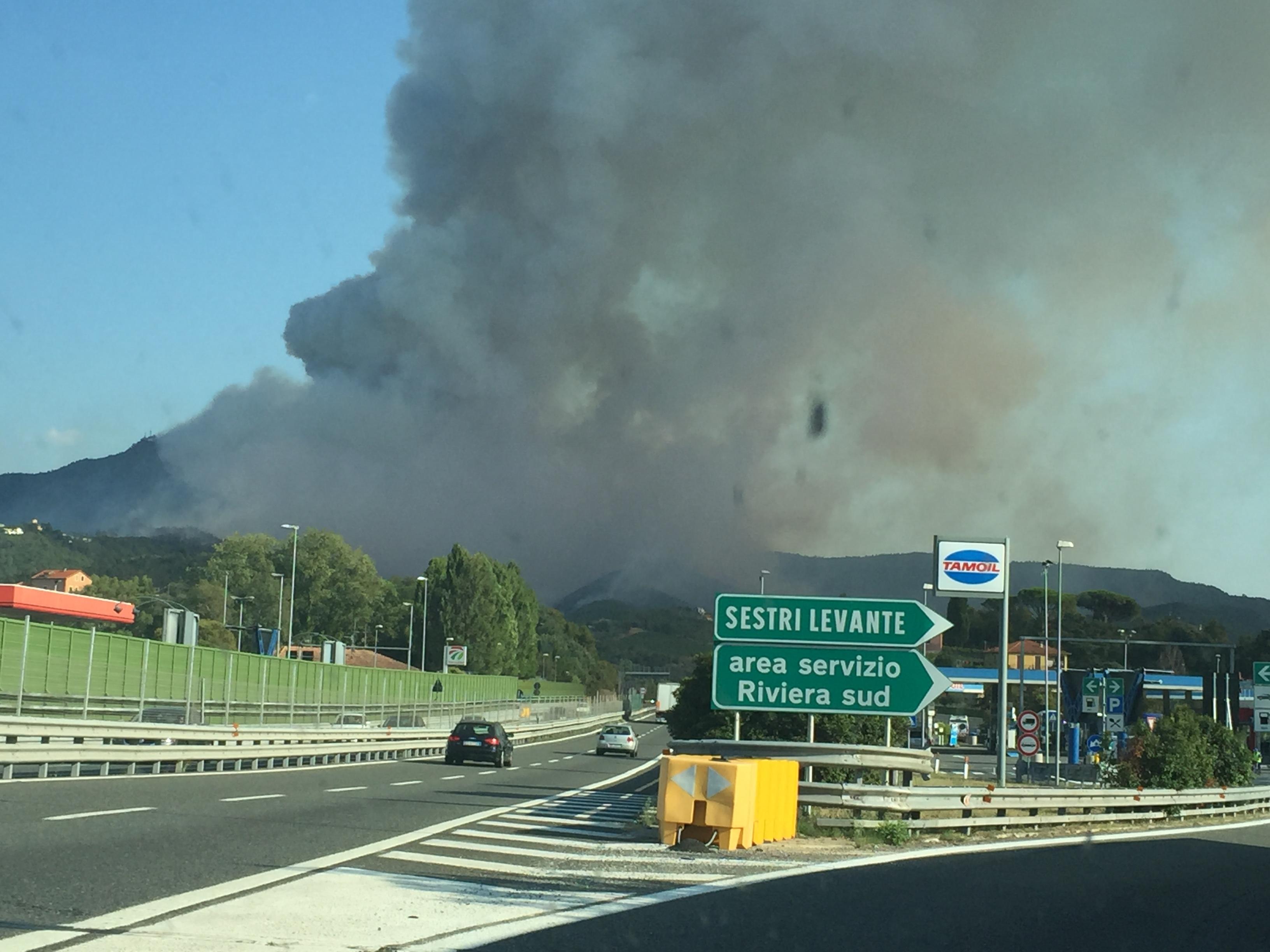 Incendio Sestri Levante danneggia macchia mediterranea