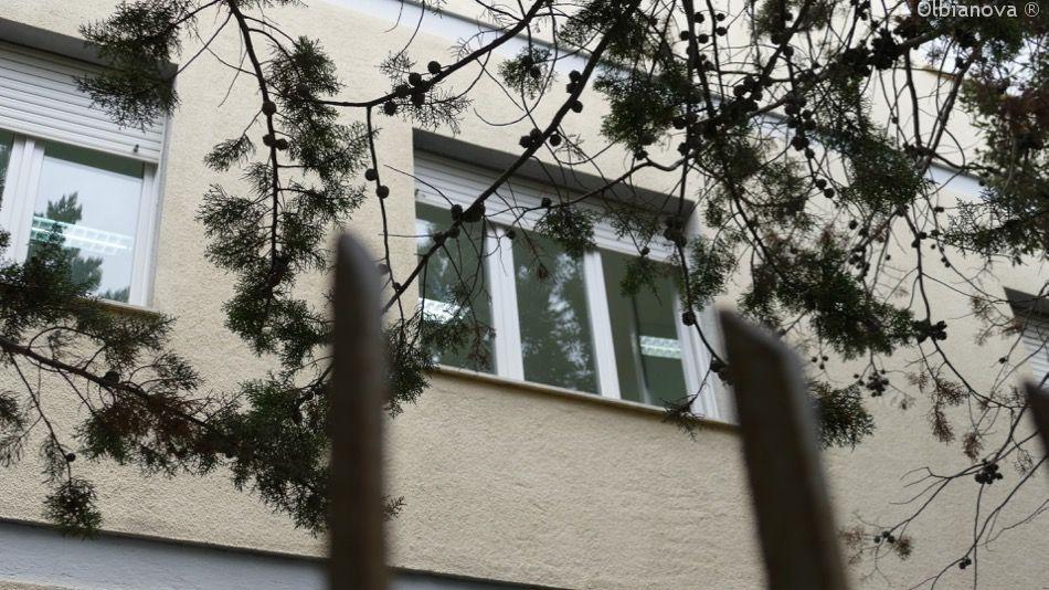 Olbia, cade finestra: ragazza ferita