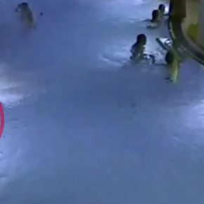 Helsinki, bimbo rischia di annegare in piscina: il video