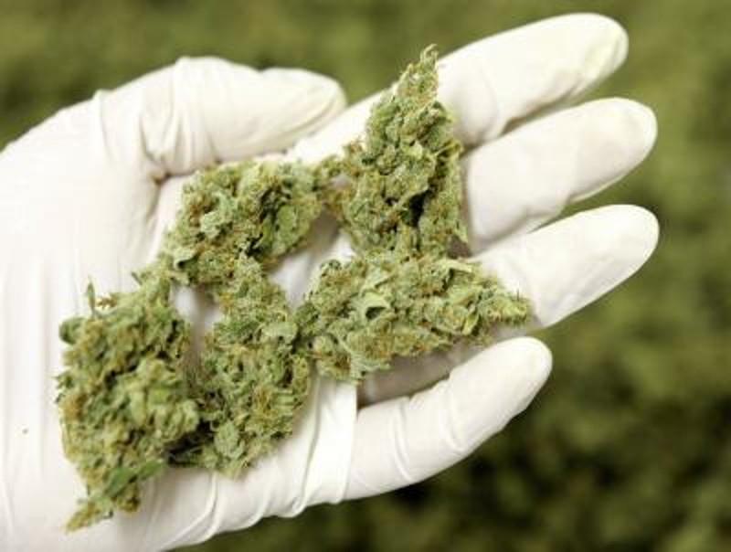 Malato ricorre al mercato nero per procurarsi cannabis terapeutica