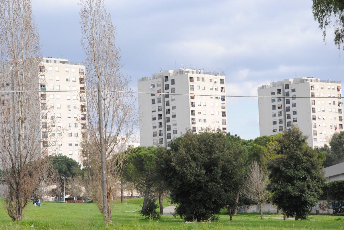 Tor Bella Monaca, bengalese cerca alloggio popolare: aggredito dal branco