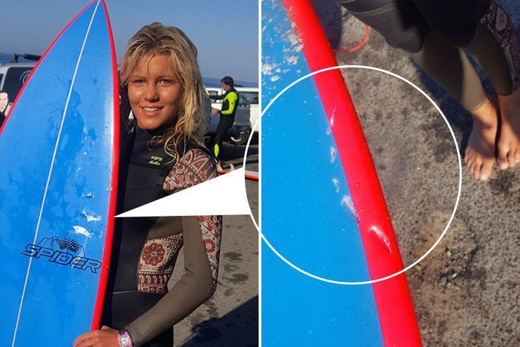 Squalo bianco attacca surfista 13enne: salva