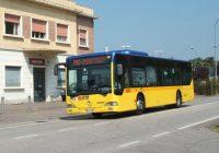 Modena, il mistero della pensilina mancante alla fermata degli autobus