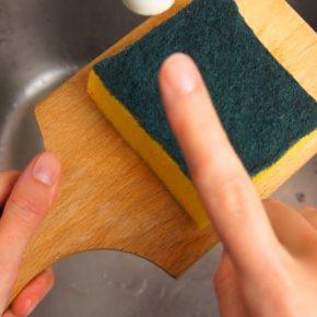 Spugne per piatti colonizzate da batteri: come feci