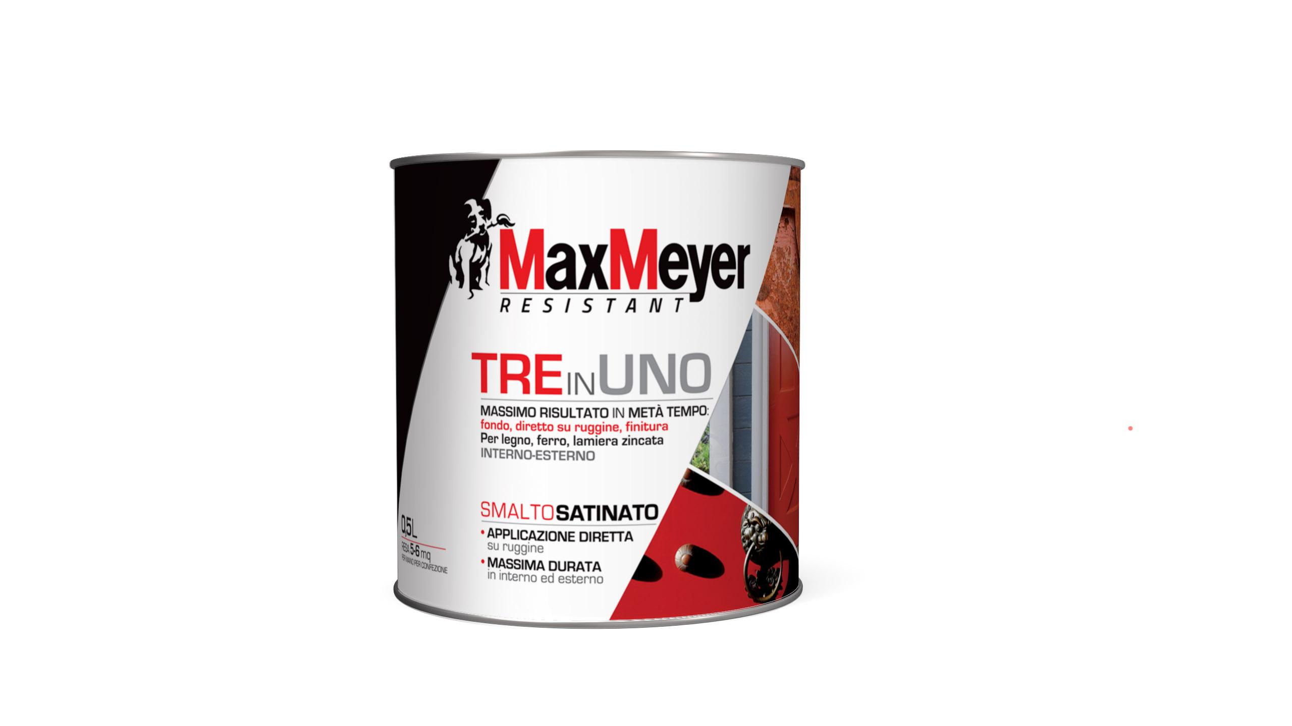 MaxMeyer, pittura innovativa 3 in 1