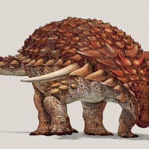 Canada, scoperta la 'Monna Lisa dei dinosauri'