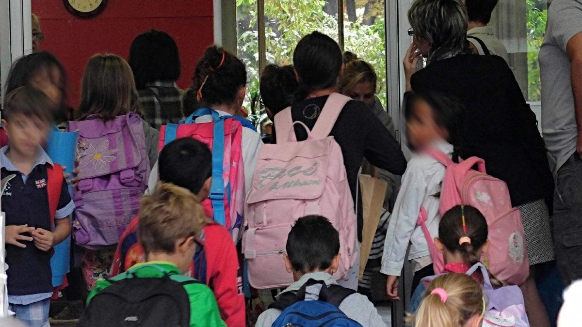 Topi nella scuola materna, emergenza a Roma