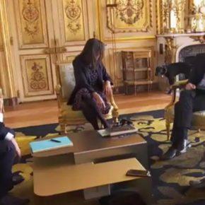 Eliseo, cane Macron entra in una stanza e fa pipì