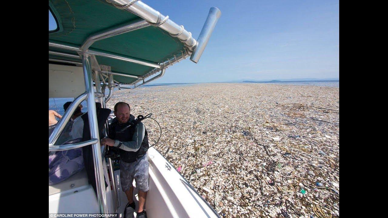 Caraibi, isola di Roatan sommersa dalla plastica