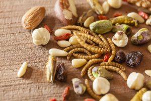 Novel food in Italia: questo sconosciuto