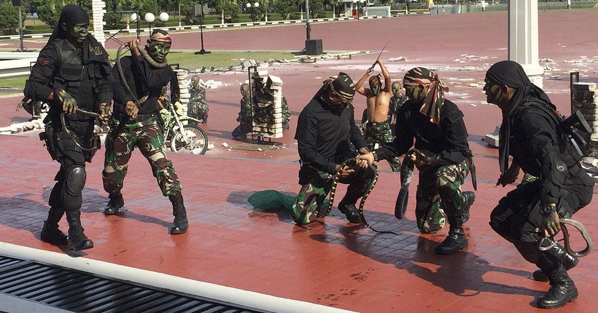 Indonesia, militari uccidono serpenti davanti a Mattis