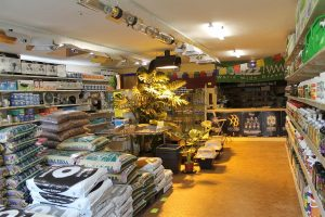 Cannabis light ragione di business: spopolano i growshop