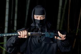 cercasi-ninja-giappone