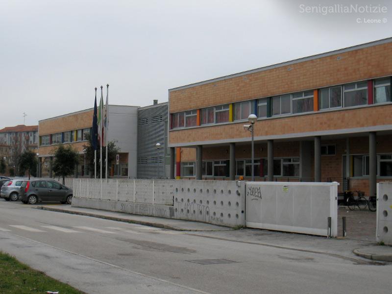 tubercolosi-istituto-padovano-senigallia