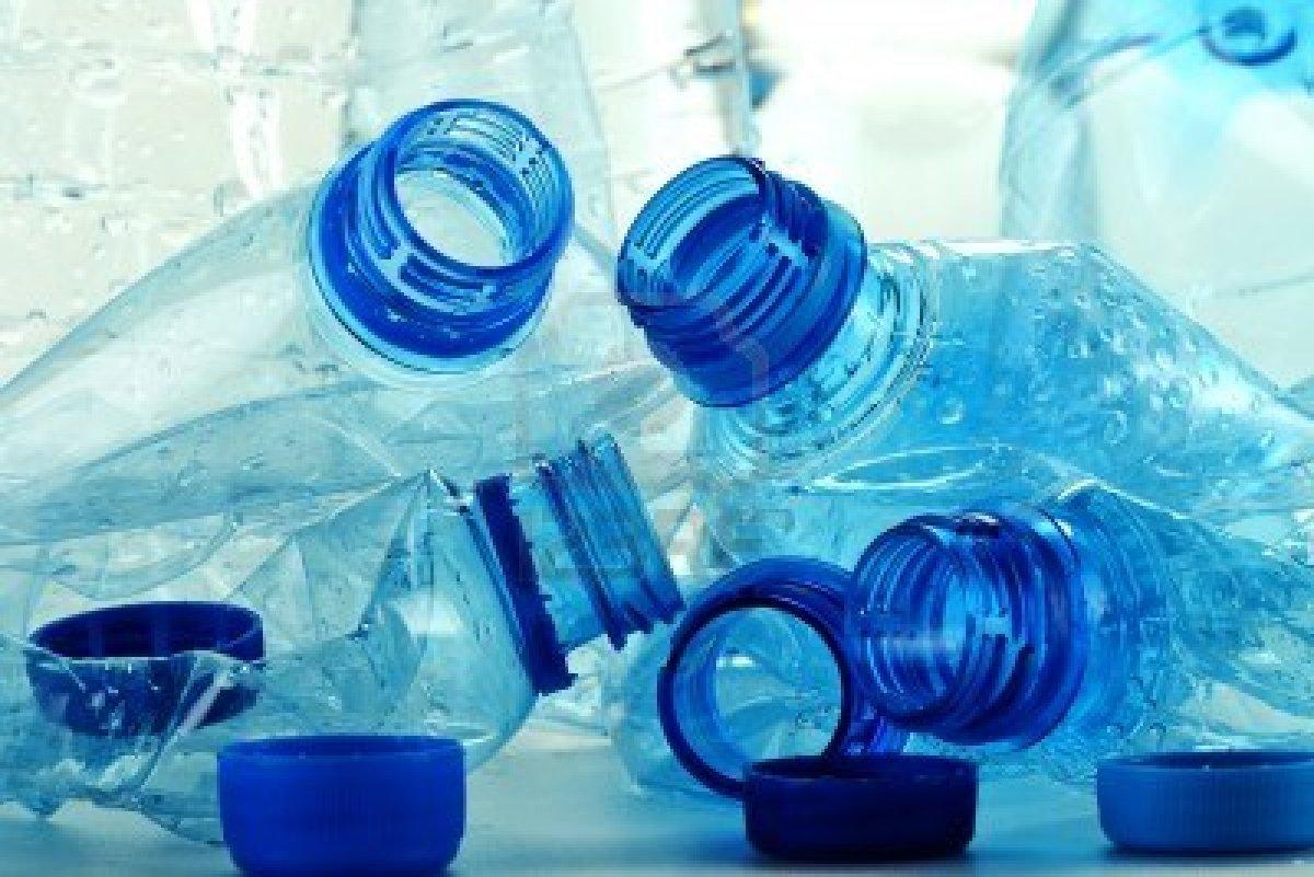 plastica-enzima-mutante