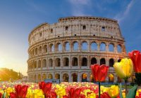 tulipark-vandali-roma
