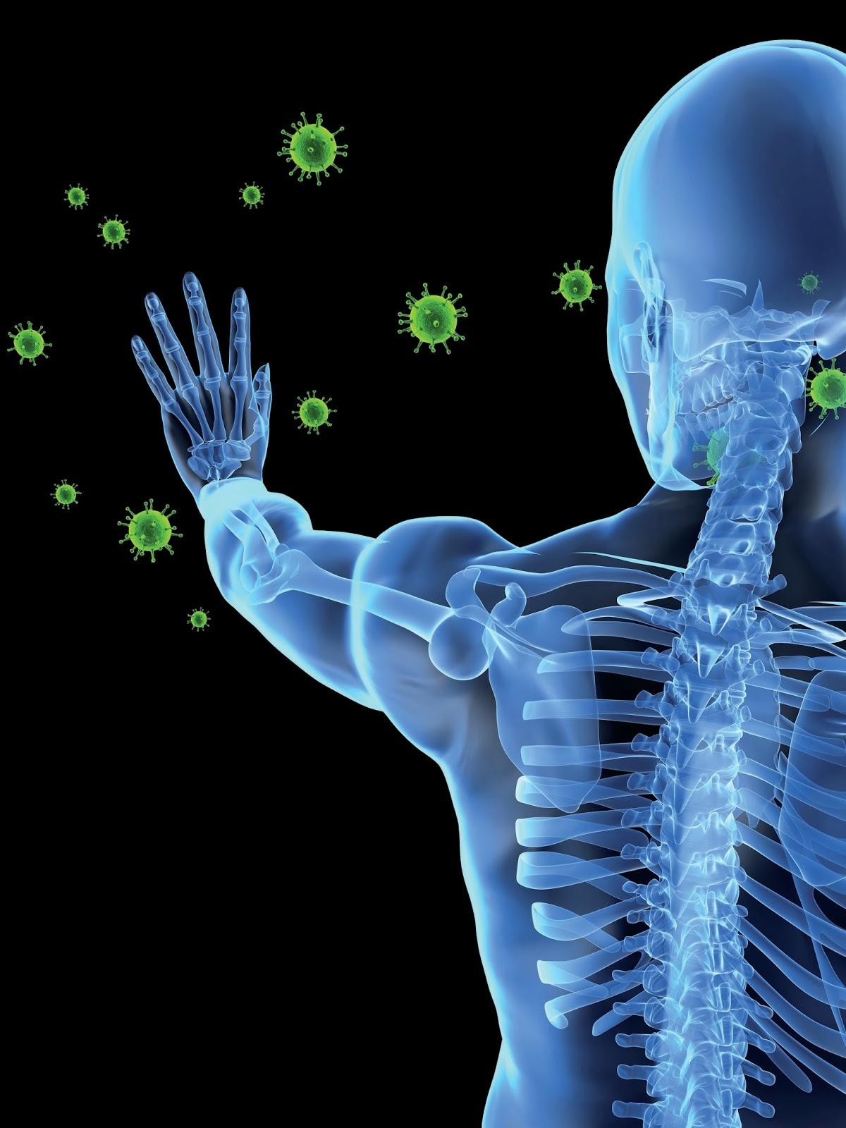Sistema immunitario forgiato dall'ambiente