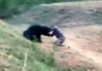 India, orso uccide uomo che voleva scattarsi un selfie