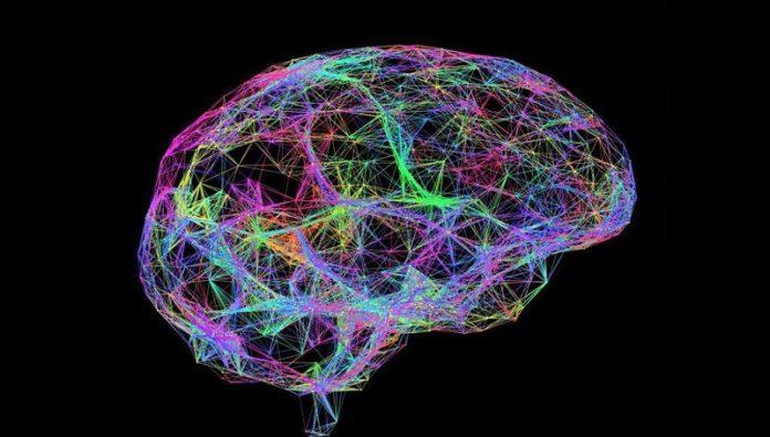 declino-memoria-connessioni-neuronali